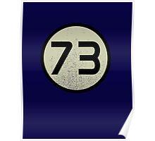 73 Sheldon shirt Poster