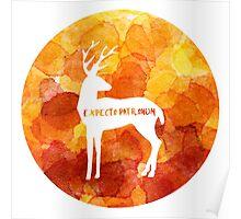 Expecto Patronum - Harry's Patronus Poster