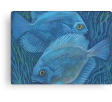 Blue discuses, pastel painting, underwater art Canvas Print