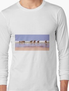 a group of Ruddy Turnstone (Arenaria interpres)  Long Sleeve T-Shirt