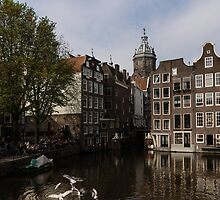 Amsterdam - Noisy Seagull Commotion on the Canal  by Georgia Mizuleva