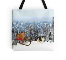 Sledding with Cats Tote Bag