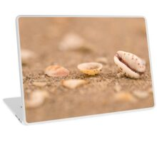 mouth shaped seashell of a Lamellaria sea slug on the beach Laptop Skin