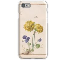 Circle of Madeleine Françoise Basseporte  Hyacinthus (top). Double Violet (Viola) (bottom) iPhone Case/Skin