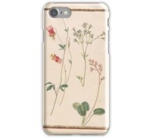 Circle of Madeleine Françoise Basseporte 1701-1780 Columbine (left). Geum radiatum (right). Saxifage (center).  iPhone Case/Skin