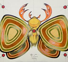 deer - moth by federico cortese