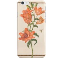 Circle of Madeleine Françoise Basseporte Day Lily Hemerocallis iPhone Case/Skin