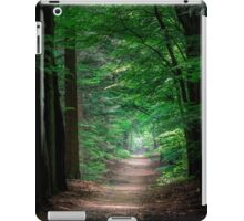 a path in the forest iPad Case/Skin
