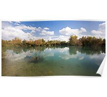 Ein Afek Nature Reserve on the Naaman River  Poster