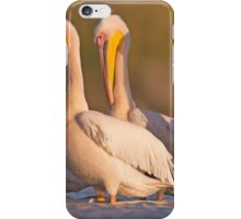 Pelicans in the water Photographed in Ein Afek Nature Reserve, iPhone Case/Skin