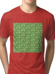 Archeology Tri-blend T-Shirt