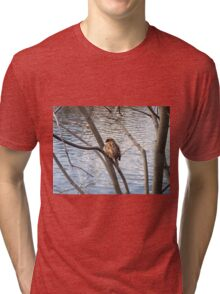 Sparrow by a pond Tri-blend T-Shirt