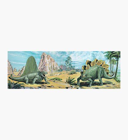 Dimetrodon & Stegosaurus Frieze Photographic Print