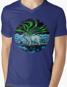 Northern Lights Mens V-Neck T-Shirt