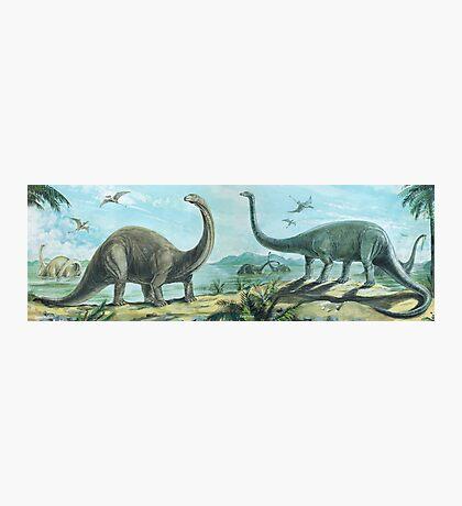 Brontosaurus & Diploducus Frieze Photographic Print