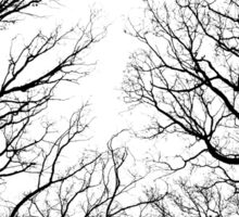 Black and white Winter trees Sticker