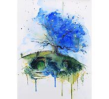 Oak Tree Photographic Print