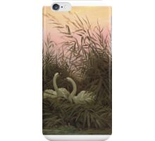 CASPAR DAVID FRIEDRICH, SWANS IN THE REEDS iPhone Case/Skin