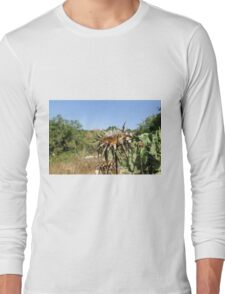Dry milk thistle in summer Photographed in Israel in July Long Sleeve T-Shirt