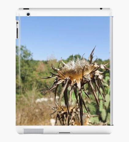 Dry milk thistle in summer Photographed in Israel in July iPad Case/Skin