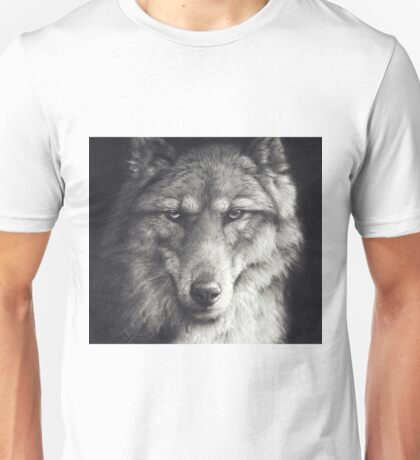 Shadow Falling Unisex T-Shirt