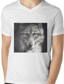 Shadow Falling Mens V-Neck T-Shirt