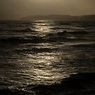 WINTER SUNLIGHT ON THE SEA by Michael Carter