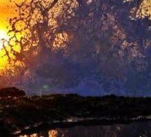 Sunrise splash Santa Cruz Sticker