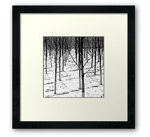 Winter Army Framed Print