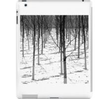 Winter Army iPad Case/Skin