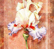 Gorgeous Iris Decorative Painting by Irina Sztukowski