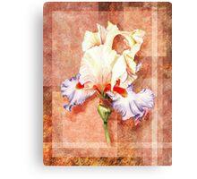 Gorgeous Iris Decorative Painting Canvas Print