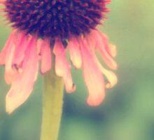 Beauty Fading ~ Flower. Sticker