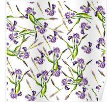 iris pattern  Poster