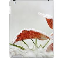 Frosted Maple Leaf iPad Case/Skin