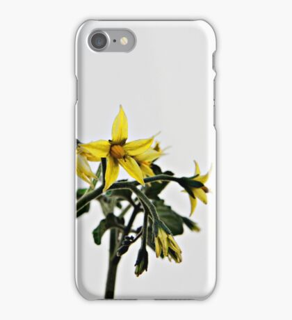 Tomato Flowering iPhone Case/Skin