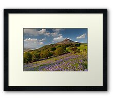 Rosberry Topping Bluebell Woods Framed Print