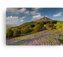 Rosberry Topping Bluebell Woods Canvas Print