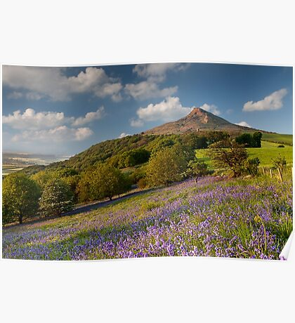Rosberry Topping Bluebell Woods Poster