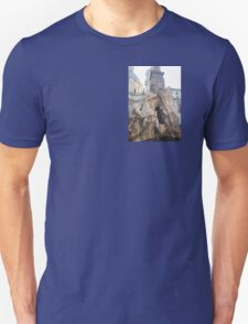this really sick fountain  T-Shirt