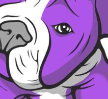 Pit Bull  Pup Tilted Head Cartoon Purple Sticker