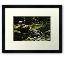 Don't be fooled Framed Print