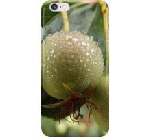 Wet Crabapples iPhone Case/Skin