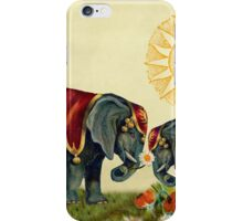 Elephants in Love iPhone Case/Skin