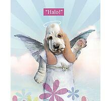 Halo! Photographic Print