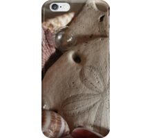 Sand Dollar iPhone Case/Skin