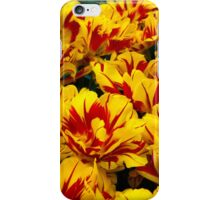 Yellow Tulips of Holland iPhone Case/Skin