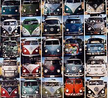VW Buses by tvlgoddess