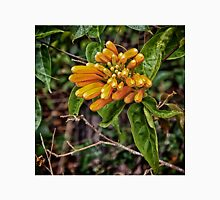 Beautiful orange trumpet flower Unisex T-Shirt
