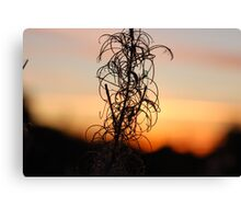 Leafy Sunset Silhouette Canvas Print